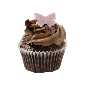 Double Chocolate Cupcake e1583936155609